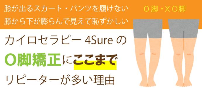 okyaku_top